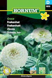 zinnia-grace-1