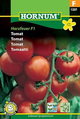 tomat-harzfeuer-f1-1