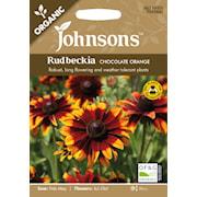 rudbeckia-chocolate-orange-organic-1