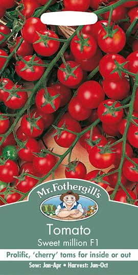 tomat-sweet-million-1