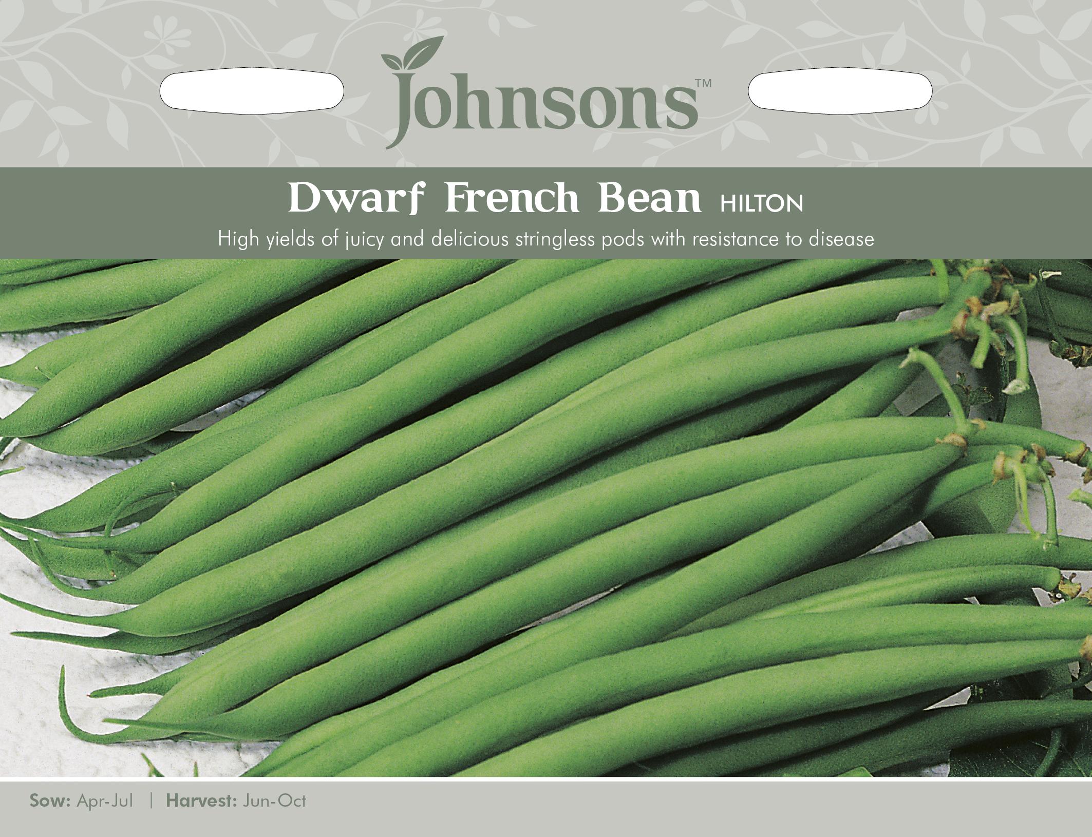 Böna French Bean 'Hilton