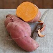 stpotatis-erato-orange---3-plantor-1