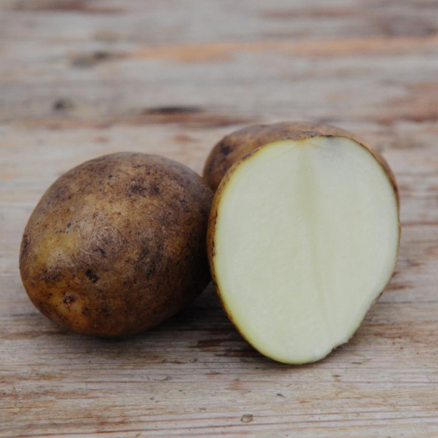 Potatis - Valor 1kg