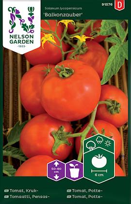 tomat-busk--balkonzauber-1