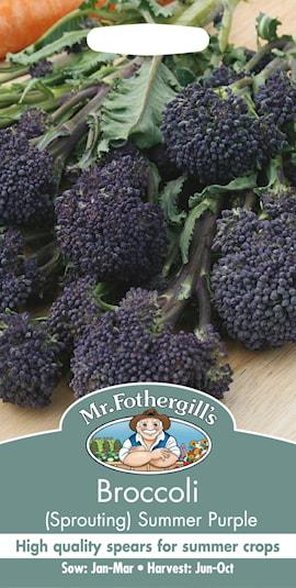 broccoli-summer-purple-1