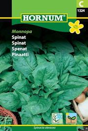 spenat-monnopa-1