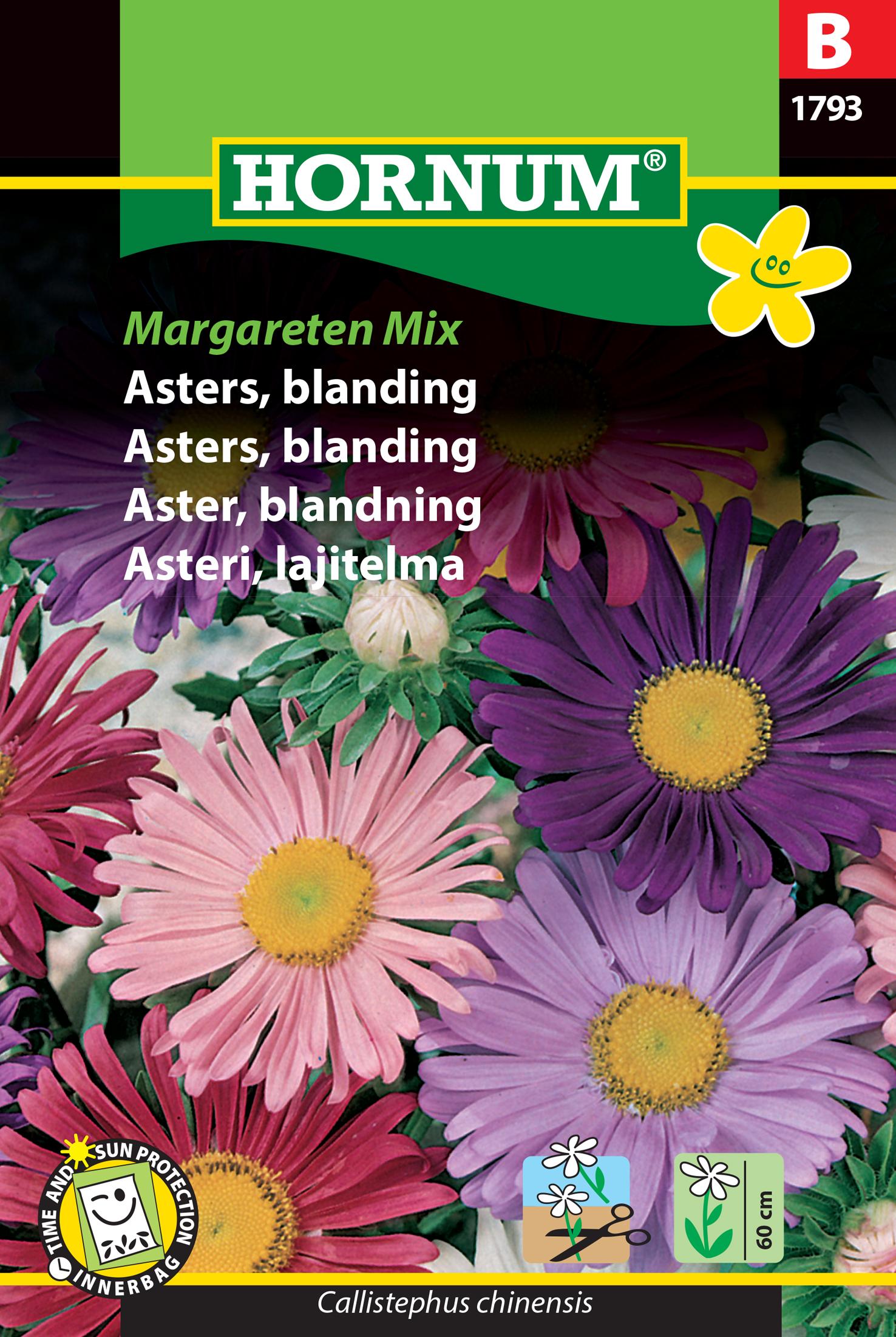 Aster, blandning 'Margareten