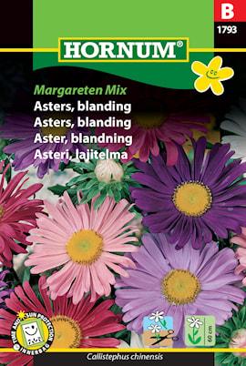 aster-blandning-margareten-1