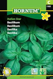 basilika-italian-star-1