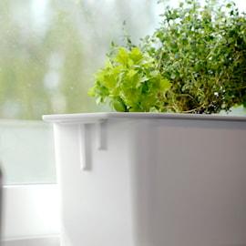 hydroponisk-odling-harvy-vitt-lock-kit-1
