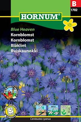 blklint-blue-heaven-1