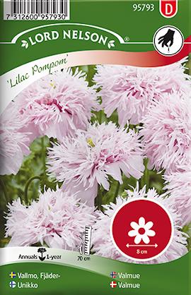vallmo-fjder--lilac-pompom-1