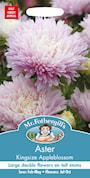 aster-kingsize-appleblossom-1