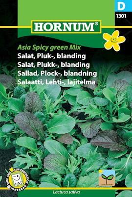 sallad-plock--asian-spicy-green-1