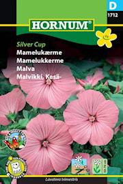 malva-silver-cup-1