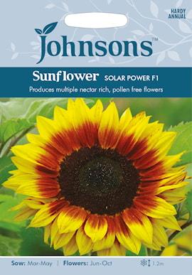 solros-solar-power-f1-1
