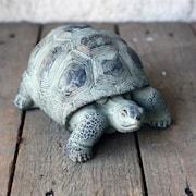 skldpadda-18x14x8h-lg-cement-grn-1