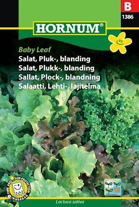 sallad-plock--blandning-baby-leaf-1