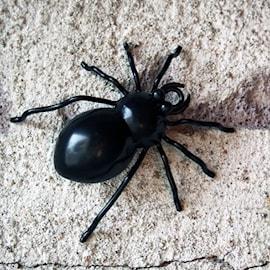 spindel-m-gla-8x8cm-svart-1