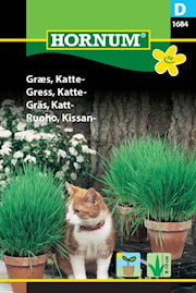 kattgrs-blandning-1