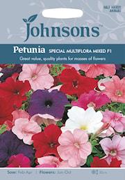 petunia-special-multiflora-mixed-f2-1