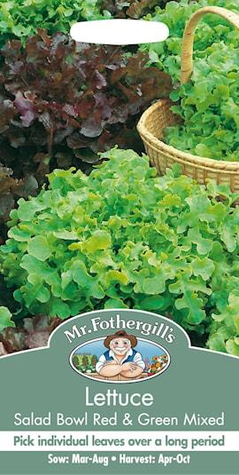 sallat-salad-bowl-red-green-1
