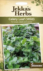 selleri-leaf-wild-1
