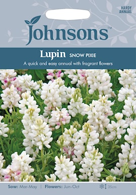 lupin-snow-pixie-1