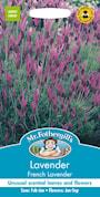 fjrilslavendel-french-lavender-1